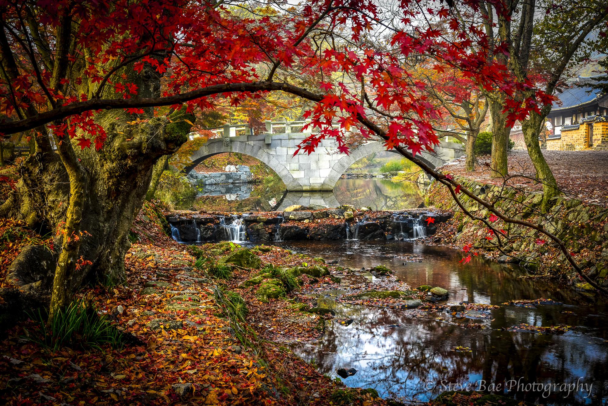 Autumn of Sonwoonsa