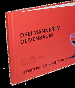 Paul-Ridder+Drei-Männer-im-Olivenbaum-1