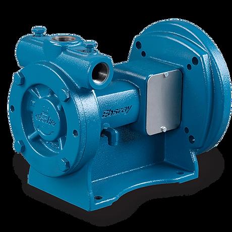 rc20_blackmer_regenerative_turbine_pump_