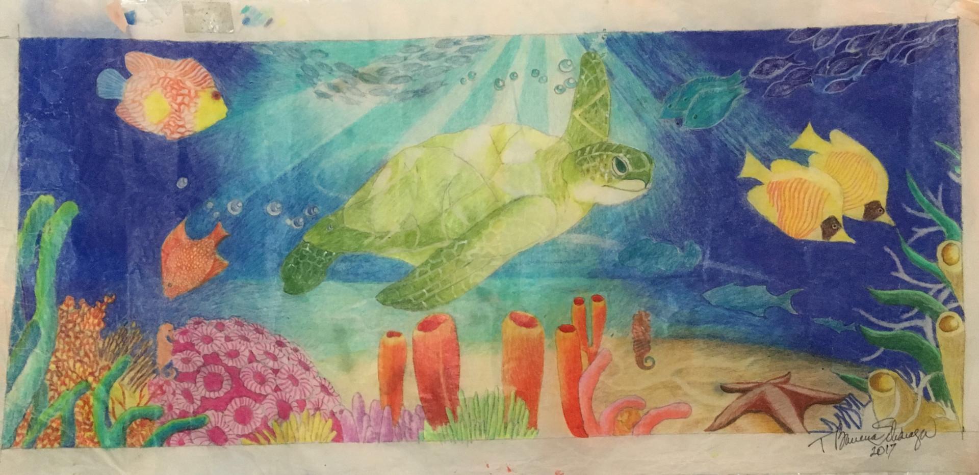 TBScharaga_TurtleMural_1077.JPG