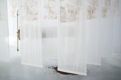 Tessie Barrera-Scharaga_ Malady JD007