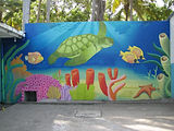 Photo of a mural on a school wall in El Salvador. The school is in a fishing village on the coast so the mural depicts a scene from the ocean. The. main subject is a large green sea turtle swimming above a colorful coral reef. Tropical fish surround.