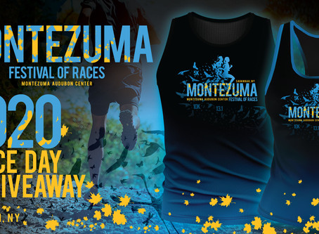 Montezuma Festival of Races (13.1, 10K & 5K)