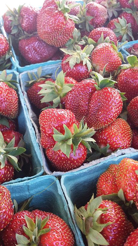 Baldwinsville Camillus Farmers Market