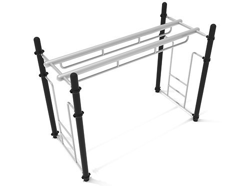 Double Parallel Bar Ladder