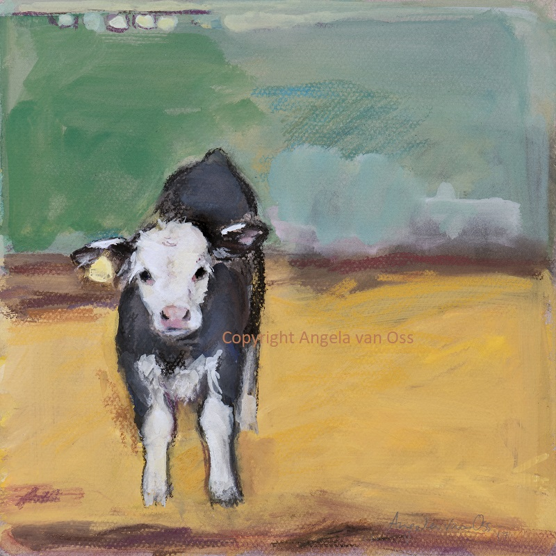 NEW PRINT - Little calf standing