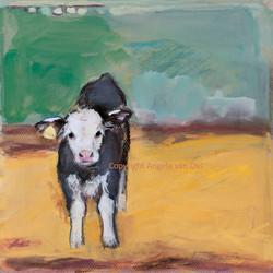 NEW PRINT - Little calf standing