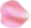 flower-3194081_03.png