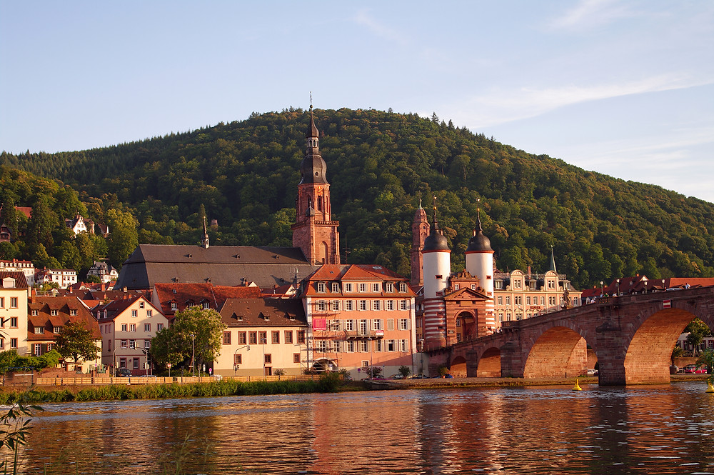 Heidelberg affinity groups travel advisor covid-19