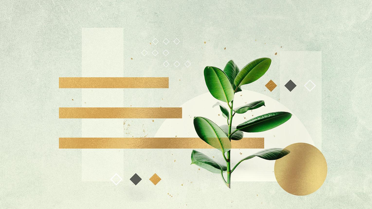 ComeGrow-Theme-Blank.jpg