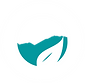 oasis logo bluu.png
