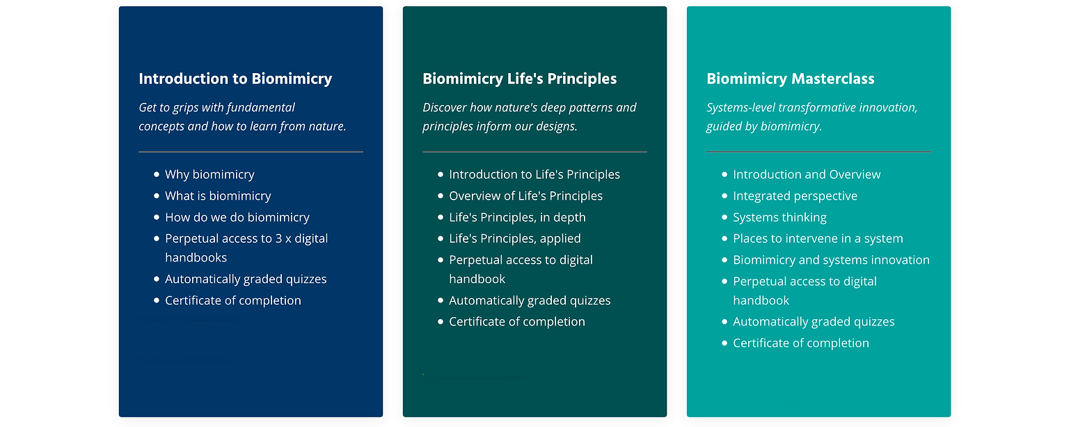 bio classes copy.png