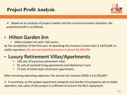 Project profit Analysis