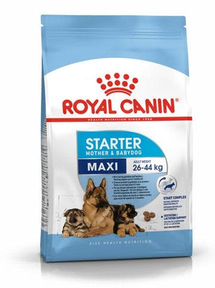MAXI STARTER 4kg / 15kg