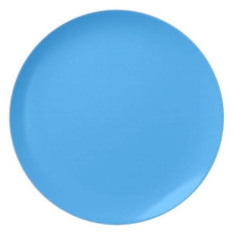 Turquoise Melamine Plate