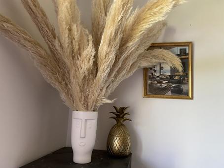Faire sécher des fleurs de pampa en 5 étapes