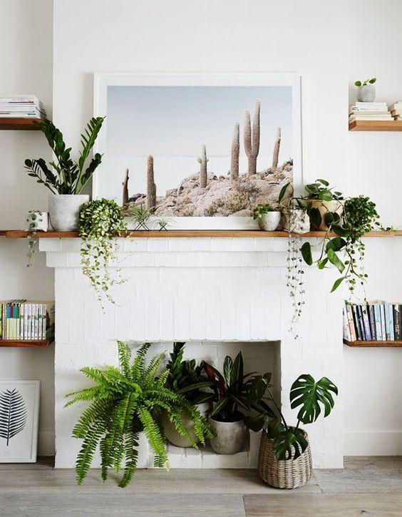 embellir avec des plantes