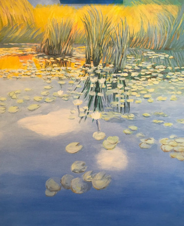 27. LILY PADS and REEDS