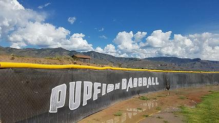 Panorama - Pupfish.jpg