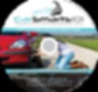 DVD-label-carsmarts101-for-Web.png