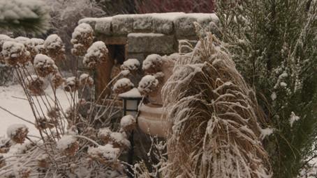 Pierwszy śnieg tej zimy !!!