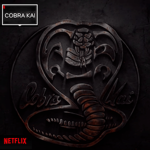Why 'Cobra Kai's'​ move to Netflix is the perfect sequel