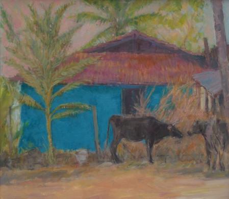 Cattle Feeding, Kanartaka