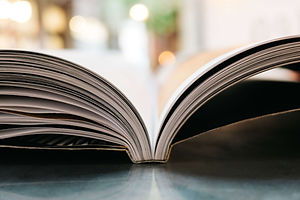 Icon for handbooks (2).jpg