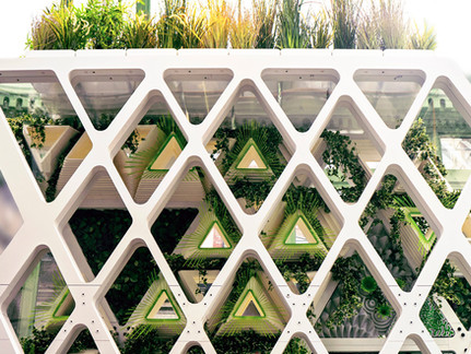 Monarch Sanctuary at Cooper Hewitt Design Triennial