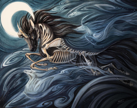 Unicorns by Night