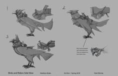 Bird Riders Design Page
