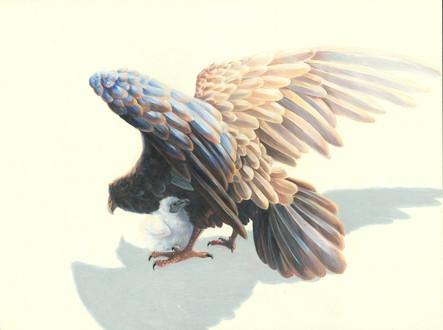 Mother Vulture