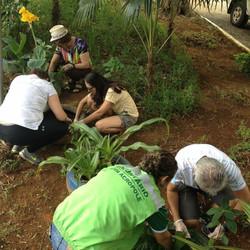 Voluntariado_com_membros_Águas_Claras