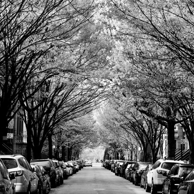 Sugar Hill, NY