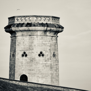 Druid Park Tower