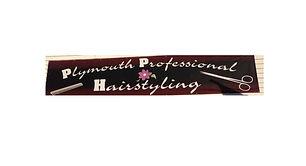 Plymouth Professional.jpg