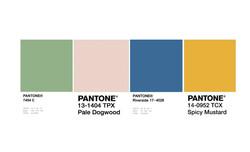 palette cromatica pantone