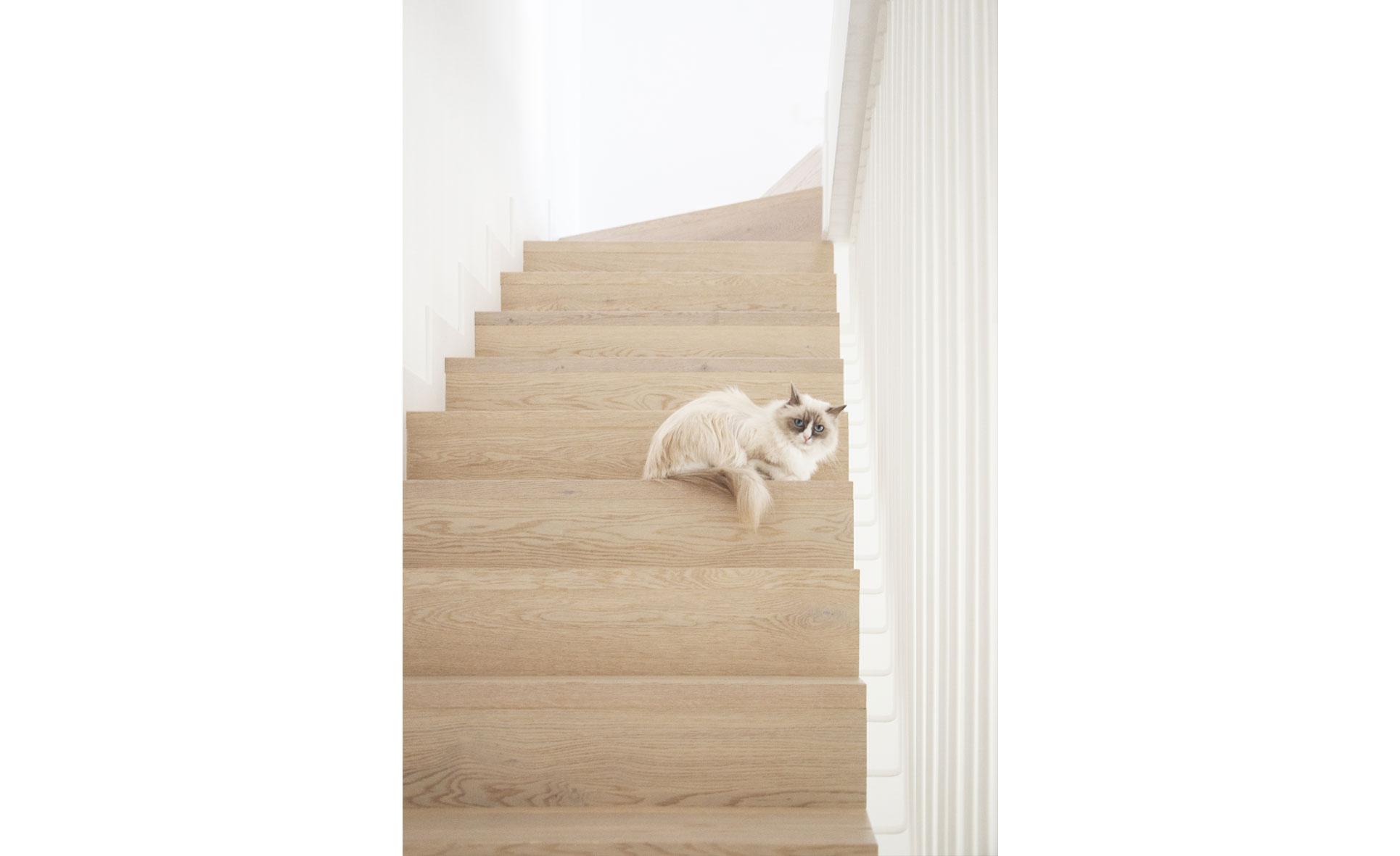 scale-legno-stile-nordico