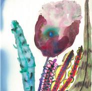 望春の花3
