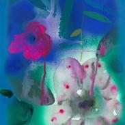 望春の花4