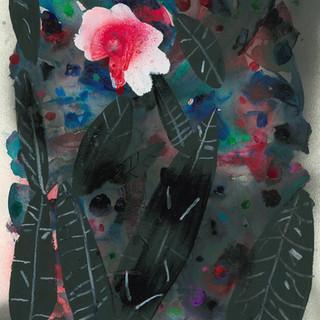 望春の花6