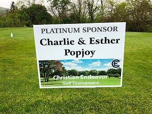 Popjoy - Platinum - web.jpeg