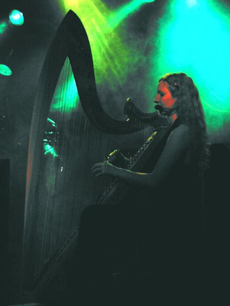 Harfe 2.JPG