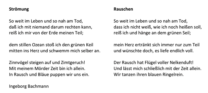 Rauschen_Ute Meck.png
