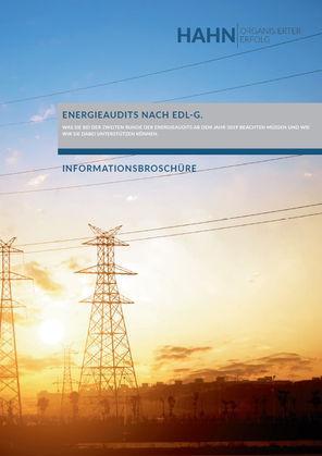 Energieaudit EDL-G