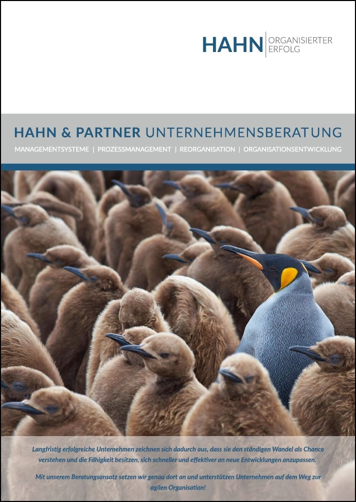 Unternehmensbroschüre HAHN & PARTNER Unternehmensberatung