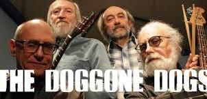 """DOGGONE DOGS, Sabato 03 Febbraio ore 16:30   """"ViVOLiVE in ME""""  TRS Radio e Magazzino Music"""