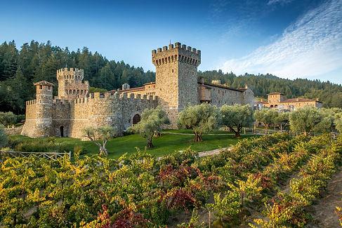 Napa Castle.jpeg