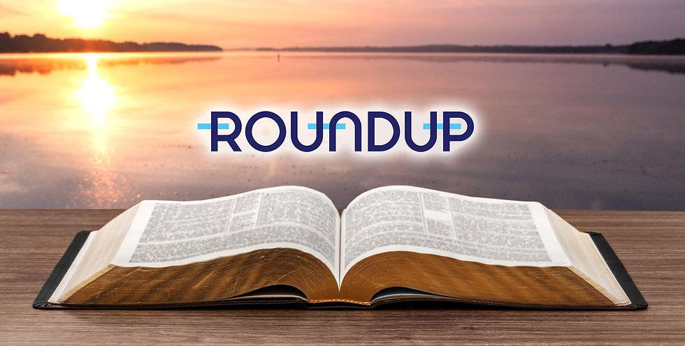 roundup_web.jpg