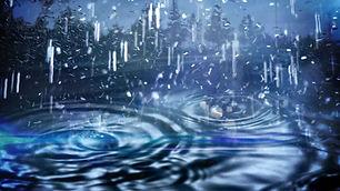 Rain Insurance